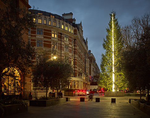 Antony Gormley Connaught Hotel Christmas Tree